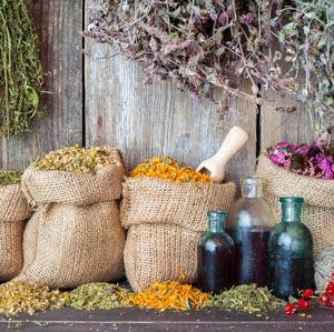 Healing Herbs Concept Image
