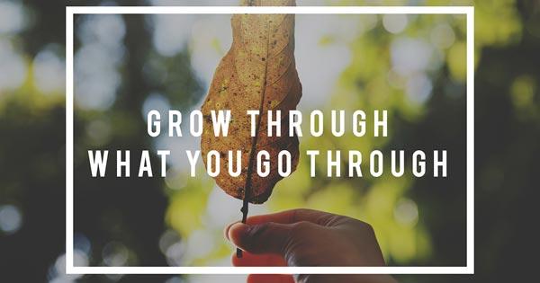 Grow through what you go through quote