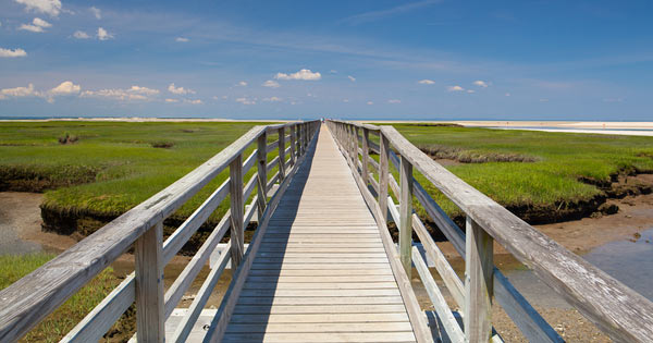 Bass Hole Boardwalk Yarmouth Cape Cod MA